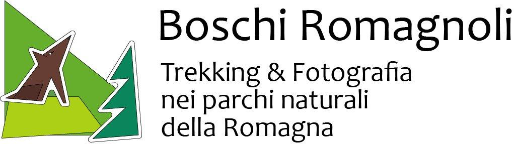 Boschi Romagnoli