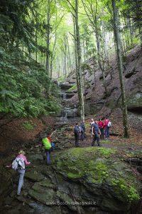 escursioni parco nazionale foreste casentinesi