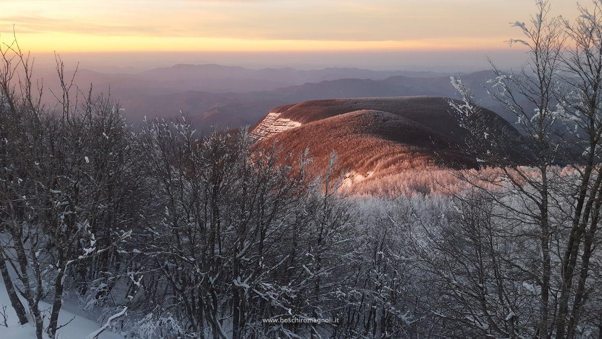 tramonto_falco_wm_web