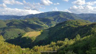 boschi romagnoli fiumicello