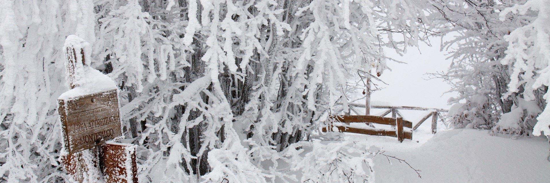 neve monte falco