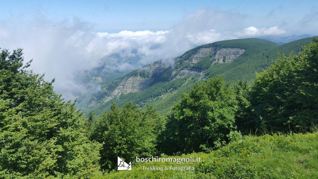 panorama monte Falterona