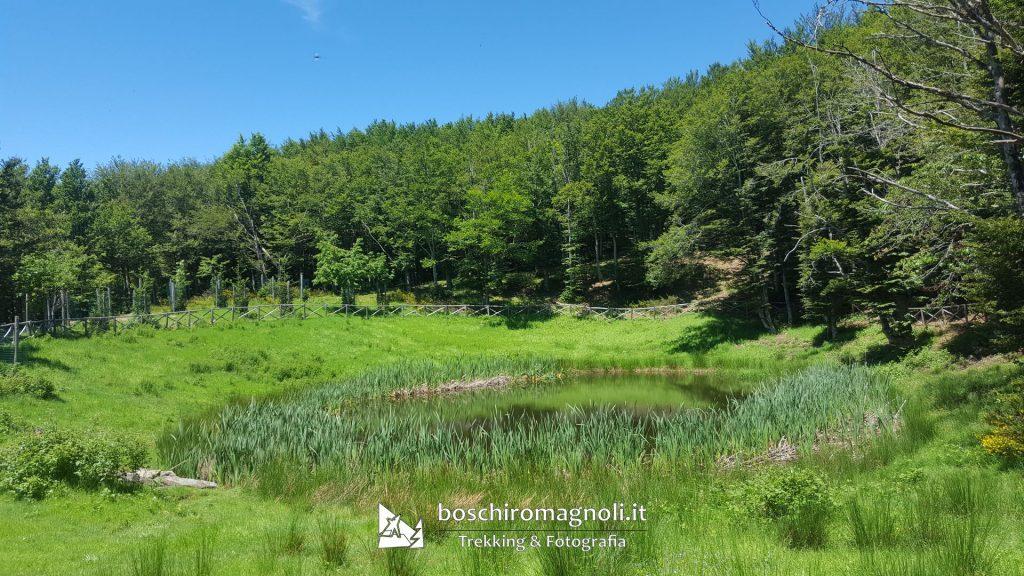 Lago degli Idoli Monte Falterona Foreste Casentinesi