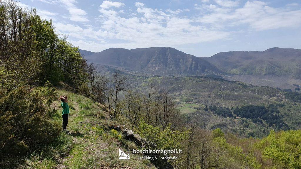 panorama Foreste Casentinesi trekking